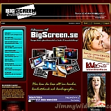 BigScreen Entertainment