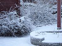 Januari 2007