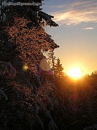 vinter sun