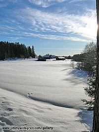 Vinter vy av bondgård