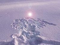 snöängel