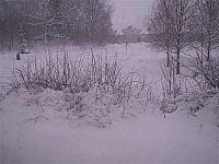 titta de snöar